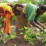Unesco, 29 et 30 juin 2015: Femmes, héroïnes de la lutte contre la pauvreté. Les enjeux de l'éducation.